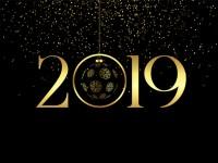 SRETNA NOVA 2019. GODINA